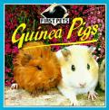 Guinea Pigs First Pets