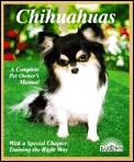 Chihuahuas Everything About Purchase