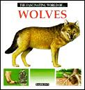 Fascinating World Of Wolves