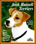Jack Russell Terriers Everything About P