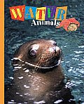 Water Animals: Seals, Squids, Fish, & More!