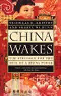 China Wakes: The Struggle For the Soul of a Rising Power Cover