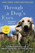 Through a Dogs Eyes