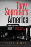 Tony Sopranos America The Criminal Side
