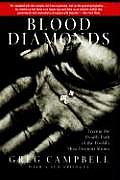 Blood Diamonds Tracing the Deadly Path of the Worlds Most Precious Stones