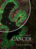 Biology Of Cancer by Robert A. Weinberg