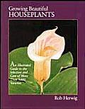 Growing Beautiful Houseplants