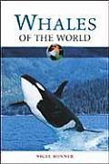 Whales of the World (Of the World Series)