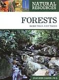 Forests: More Than Just Trees