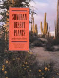 Sonoran Desert Plants An Ecological Atla