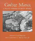 Cedar Mesa: A Place Where Spirits Dwell