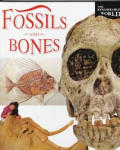 Fossils and Bones