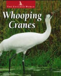 Whooping Cranes (Untamed World)