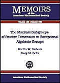 Maximal Subgroups of Positive Dimension