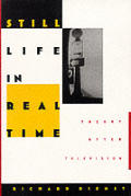 Still Life in Real Time: Theory After Television (Post-Contemporary Interventions)