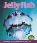 Jellyfish (Early Bird Nature)