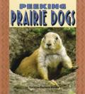 Peeking Prairie Dogs (Pull Ahead Books)