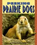 Peeking Prairie Dogs Pull Ahead
