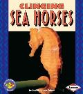 Clinging Sea Horses (Pull Ahead Books)