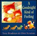 Goodnight Kind Of Feeling