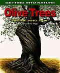 Olive Trees: Inside and Out