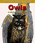Owls: Inside and Out