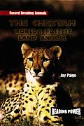 Cheetah: World's Fastest Land Animal (Guided Reading II)