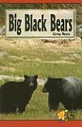 Big Black Bears by Greg Roza