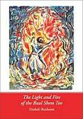 Light and Fire of the Baal Shem T