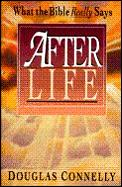 After Life: What the Bible Really Says