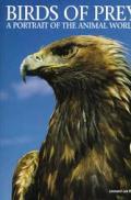 Birds Of Prey Portrait Of Animal World