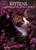 Kittens: A Portrait of the Animal World