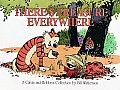 Theres Treasure Everywhere A Calvin & Hobbes