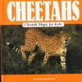Cheetah Magic for Kids (Animal Magic for Kids)