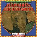 Elephants/Los Elefantes