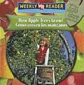 Como Crecen los Manzanos / How Apple Trees Grow (How Plants Grow)