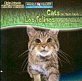 Cats Are Night Animals/ Los Felinos Son Animales Nocturnos (Night Animals/ Animales Nocturnos)