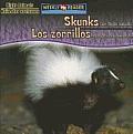 Skunks Are Night Animals