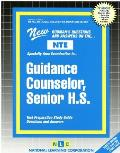 Guidance Counselor, Senior H.S.: New Rudman's Questions and Answers on The...NTE