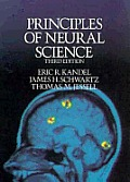 Principles Of Neural Science 3rd Edition