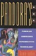 Pandora's Box: Feminism Confronts Reproductive Technology