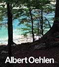 Albert Oehlen: New Paintings
