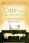 Cure for the Common Life Living in Your Sweet Spot