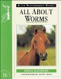 All about Worms No 16
