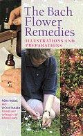 Bach Flower Remedies Illustrations & Preparations