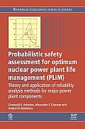 Probabilistic safety assessment for optimum nuclear power plant life management (PLim); theory and application of reliability analysis methods for major power plant components.