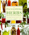 Encyclopedia Of Herbs Spices & Flavourings