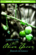 Lonely Planet the Olive Grove: Travels in Greece