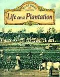 Life on a Plantation (Historic Communities)