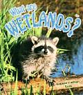 What Are Wetlands? (Science of Living Things)